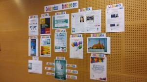Celebración Internacional IDOR